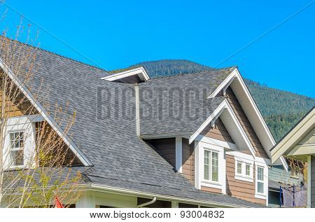 The roof of the house.
