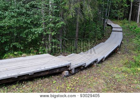 Wooden Walkway In The Forest