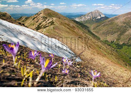 Mala Fatra Mountains And Mount Rozsutec - Slovakia