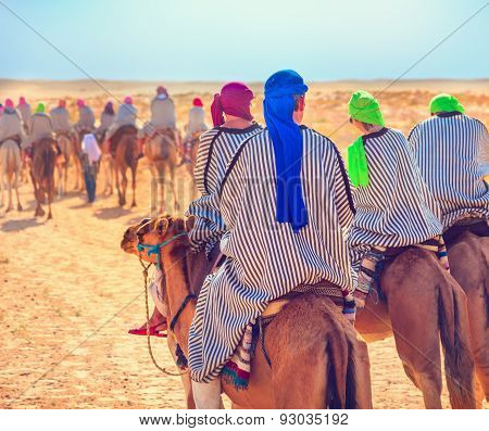 Tourists On Camel