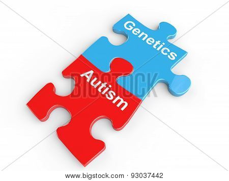 Autism and genetics puzzle link