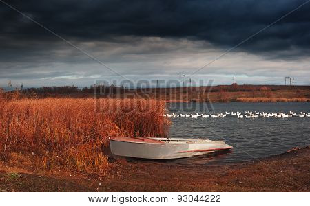 Rural Landscape With Boat And Birds
