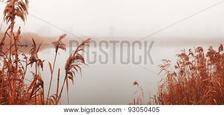 Landscape With River In Fog