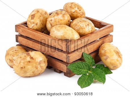 New potatoes in box with green leaves. Isolated on white background