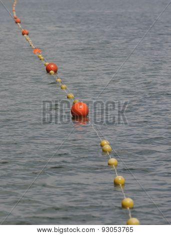 Beach safety line