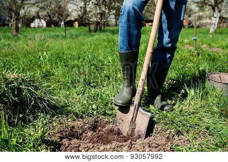 Man Digs A Hole