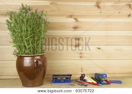 Office shelf stapler and a flower pot with lavender. Disorder in the clerk's equipment.