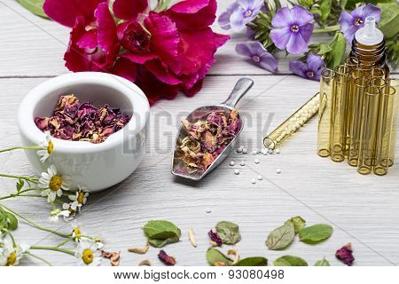 Homeopathy Lab With Herbals And Flowers