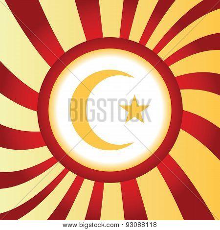 Turkey symbol abstract icon