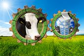 stock photo of milk  - Two wooden gears with head of cow steel cans for milk and white packaging carton of milk in a green pasture - JPG
