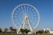picture of ferris-wheel  - Giant Ferris Wheel in the port of Valencia Spain - JPG
