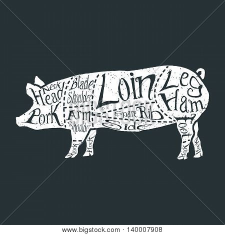 American cuts of pork, vintage typographic hand-drawn butcher cuts scheme. Vector illustration.