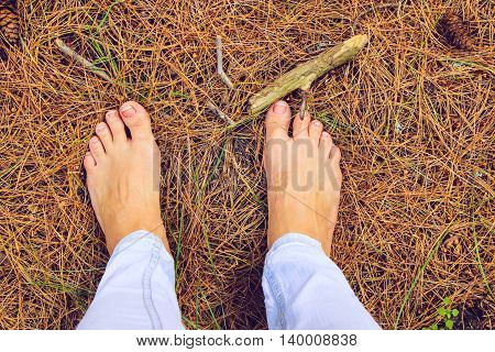 Girl legs with Pedicure Outdoors with Pine Cones