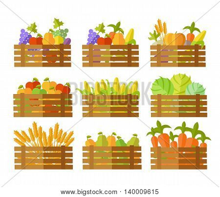 Set of farming products vector illustrations. Wooden boxes full of fruits, vegetables, cereals. Flat design. Collection for delivery farm products, grocery store assortment, foods for diet concepts.