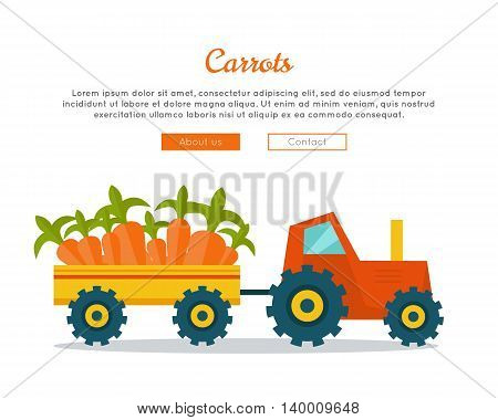 Apple farm conceptual banner. Flat design. Delivering fresh fruits from farm to market. Tractor with trailer carries big apples. Template for farm, fruit shop, transport company web page.