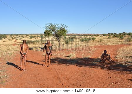 KALAHARI NAMIBIA - JAN 24 2016: Bushmen hunters in the Kalahari desert. San people also known as Bushmen are members of various