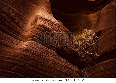 Antelope Canyon is a slot canyon in the American Southwest. It is located on Navajo land east of Page, Arizona.