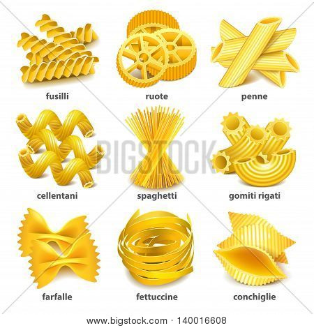 Pasta types icons detailed photo realistic vector set