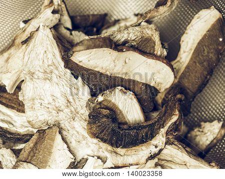 Porcini Mushroom Detail Vintage Desaturated