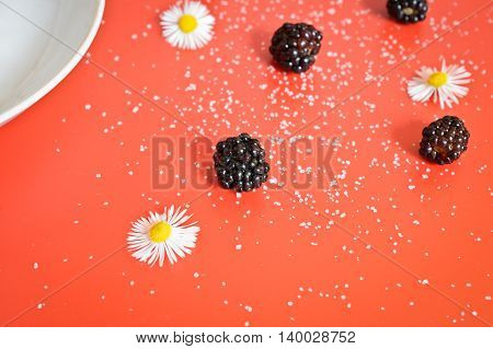 sugar and blackberries on red table background