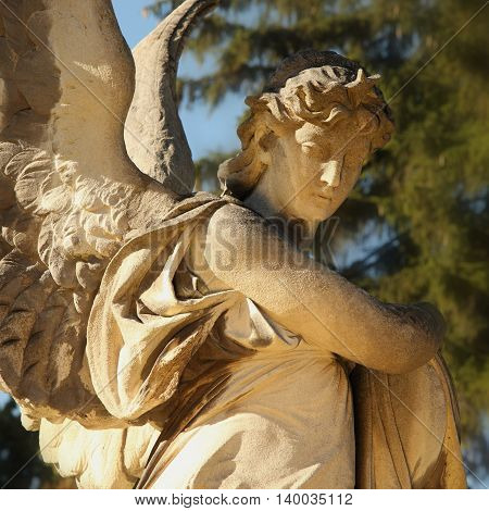 angel in the sunlight (antique statue) Ukraine Lviv Lychakiv cemeteries