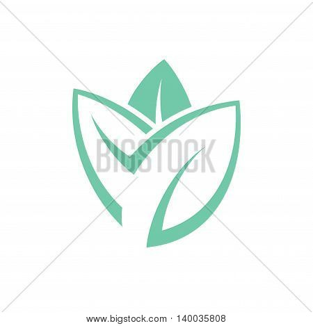 Mint. Abstract leaves on white background. (EPS)