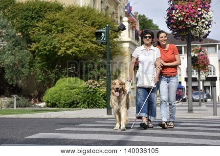 Senior blind woman crossing the street with assistance