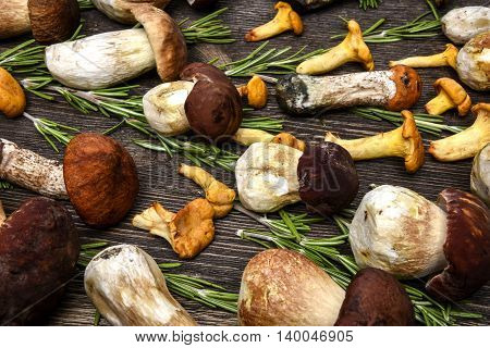 Chanterelle mushrooms and white mushrooms, for background