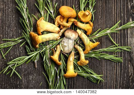 Chanterelle mushrooms with rosemary on a wooden Board
