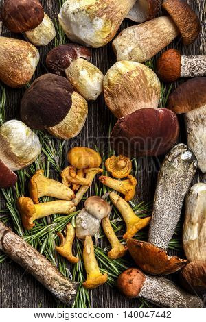Chanterelle mushrooms and white mushrooms on a wooden Board