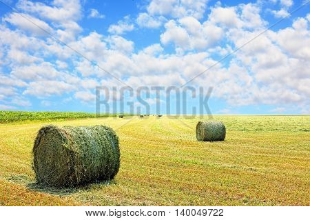 Golden stubble field and hay bales against cloudy sky.