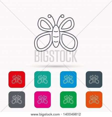 Butterfly icon. Flying lepidoptera sign. Dreaming symbol. Linear icons in squares on white background. Flat web symbols. Vector