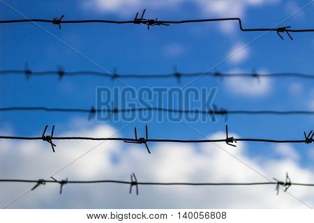Barbed wire closes blue sky and clouds