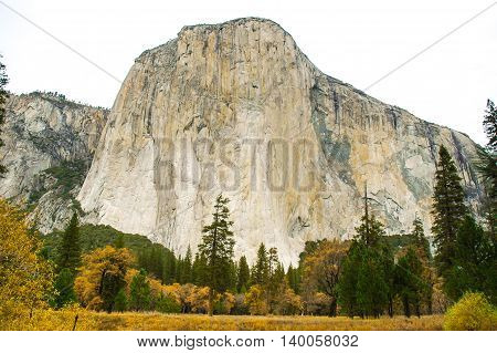 The monolith named El Capitan stands proudly over Yosemite Valley.