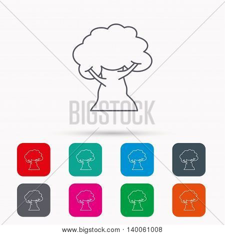 Oak tree icon. Forest wood sign. Nature environment symbol. Linear icons in squares on white background. Flat web symbols. Vector