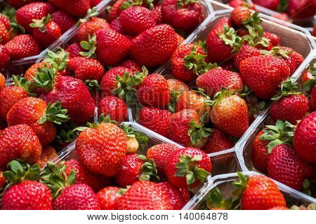 Strawberries In Boxes - Strawberry Fruits In Box