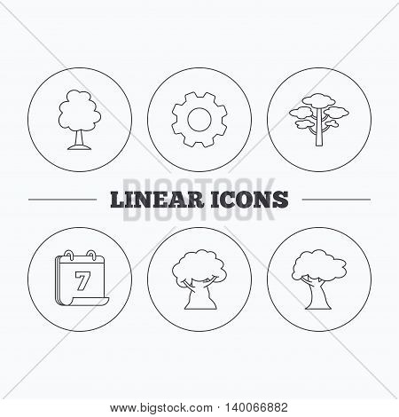 Pine tree, oak-tree icons. Forest trees linear sign. Flat cogwheel and calendar symbols. Linear icons in circle buttons. Vector