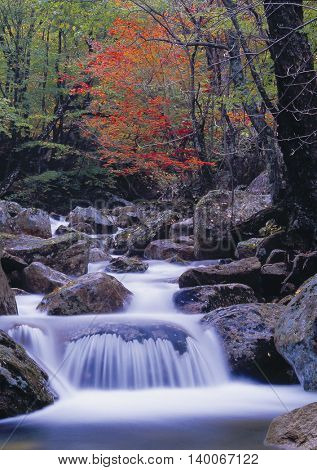Rock Valley Landscape