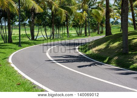 The asphalt pavement in the park, road