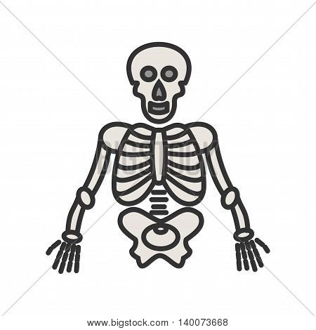Skeleton, human, anatomy icon vector image. Can also be used for digital web. Suitable for mobile apps, web apps and print media.