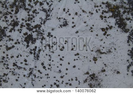black and white spotty stone grunge texture