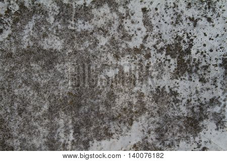 black and white grungy stone texture map