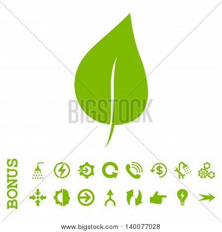 Plant Leaf glyph icon. Image style is a flat pictogram symbol, eco green color, white background.