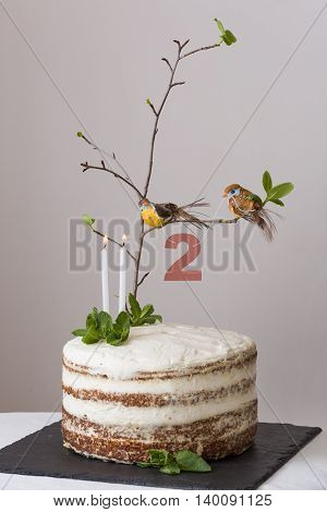Delicious birthday cake with branch of a tree birds candles and number 2 as decoration. Beautiful white carrot cake for the second birthday party. indoors.