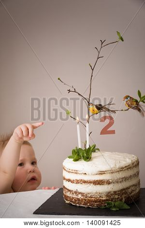 Portrait of a cute little boy pointing on a birthday cake with branch of a tree birds candles and number 2 as decoration. Delicios white cake for the second birthday party. indoors. Kid celebrates.