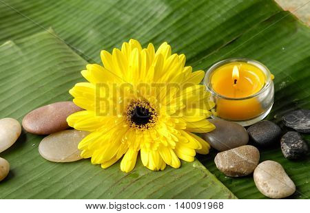 banana leaf close up with stones, yellow flower,candle