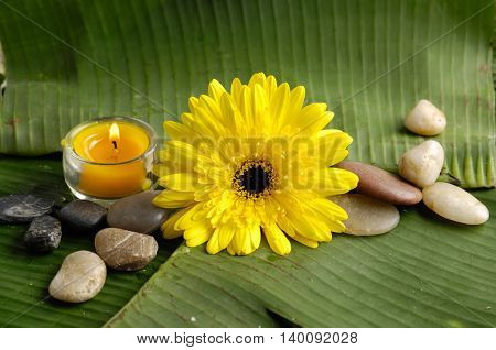 Yellow flower, candle, stones and banana leaf close up