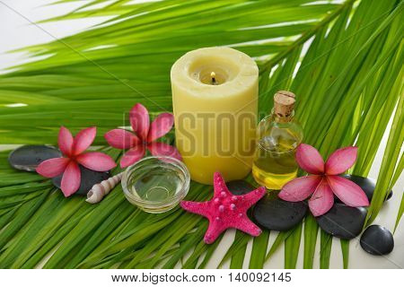 Tropical Spa on palm leaf