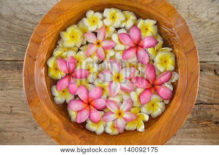 many frangipani in bowl on wood board