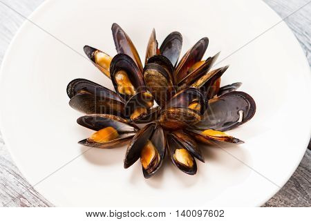 Cooked mussels on white plate. Shell of dark color. Simple meal rich in protein. Best snack in french cafe.